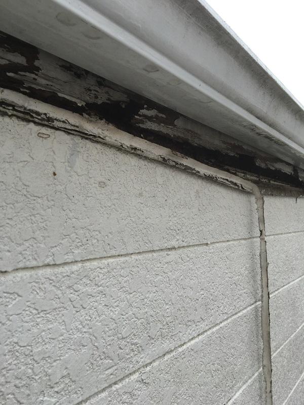 神奈川県横須賀市 外壁塗装 屋根塗装 事前調査 苔の発生原因