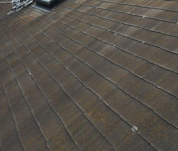 神奈川県三浦市 屋根塗装 天窓修理 雨漏り 事前調査